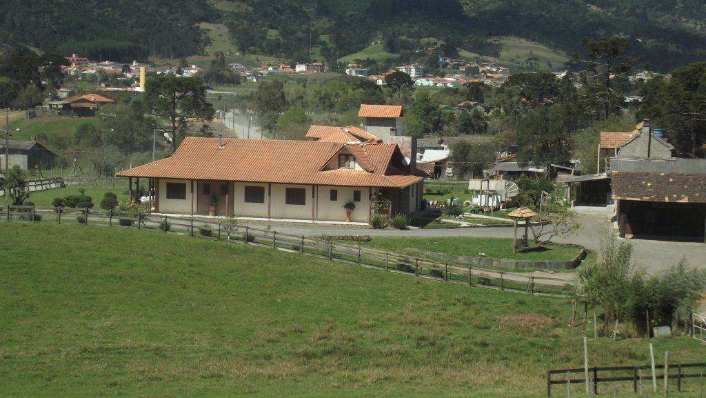 Pica Pau2