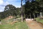 Chale na Serra Catarinense15