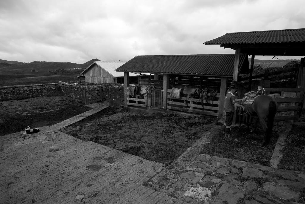 Fazenda Rincão da Palha 13
