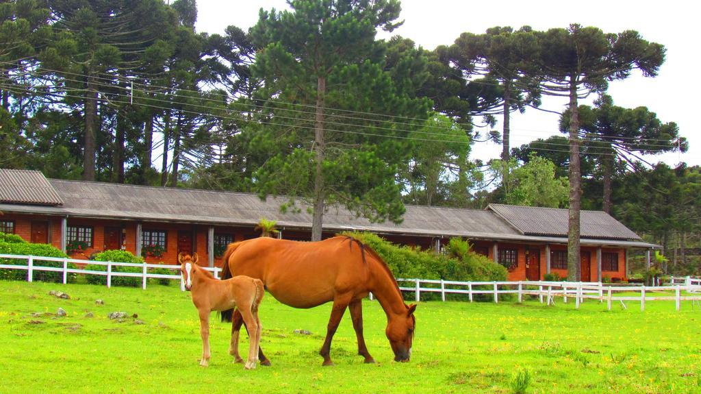 Fazenda Santa Rita Turismo Rural 23
